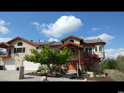 Cottonwood Heights Single Family Home For Sale: 8504 S Kings Hill Dr E
