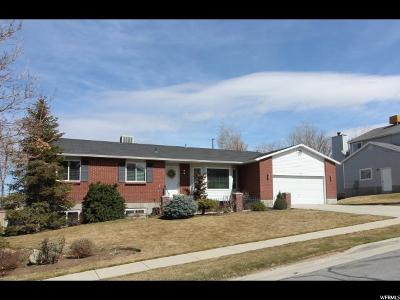 Sandy Single Family Home For Sale: 1253 E Andover Ct S