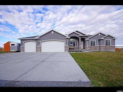 Erda Single Family Home For Sale: 3819 N Rose Springs Rd