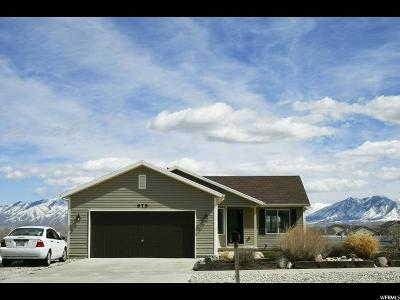 Grantsville Single Family Home For Sale: 975 S Quirk St.