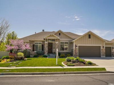 Kaysville Single Family Home For Sale: 113 N Vista View Dr