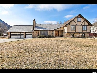 Alpine Single Family Home For Sale: 1104 E Alpine Dr