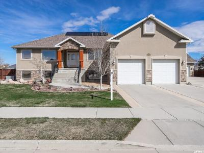 Draper Single Family Home For Sale: 314 W 13130 S. S