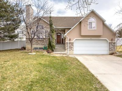 Tooele UT Single Family Home For Sale: $279,900