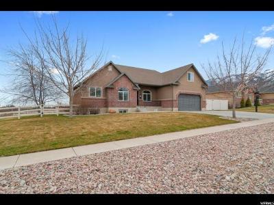 Millville Single Family Home For Sale: 127 E 600 N