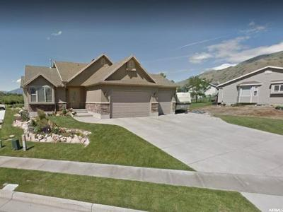 Perry Single Family Home For Sale: 1406 W 3275 S