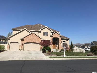 American Fork Single Family Home For Sale: 1461 N 70 E