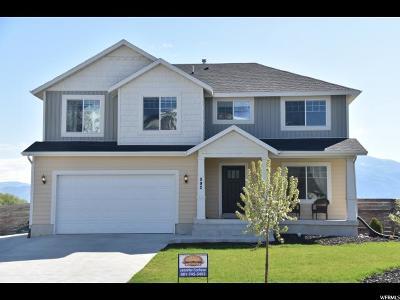 Wellsville Single Family Home For Sale: 892 E 675 N