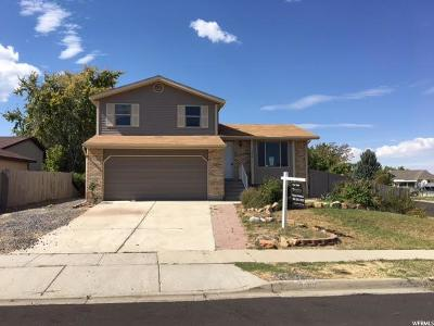 West Valley City Single Family Home For Sale: 3982 S Contadora Ln W