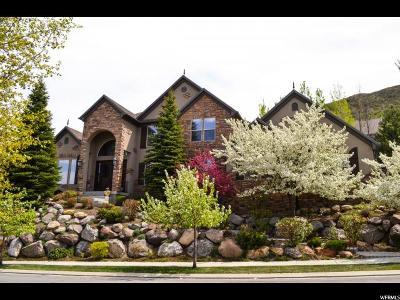 Draper Single Family Home For Sale: 14737 S Draper Woods Cv