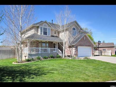 Draper Single Family Home For Sale: 672 E 12860 S