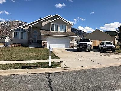 Tooele UT Single Family Home For Sale: $269,000