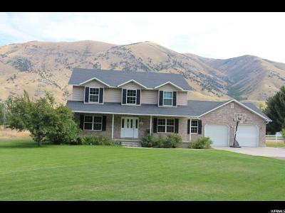 Nibley Single Family Home For Sale: 4820 S Hollow Rd