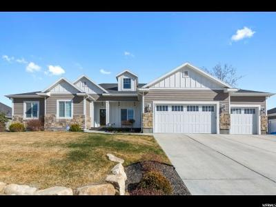 American Fork Single Family Home For Sale: 916 W 800 N