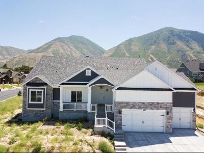 Salem Single Family Home For Sale: 1043 S 925 E