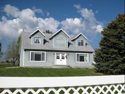 Grantsville Single Family Home For Sale: 721 N Old Lincoln Hwy W