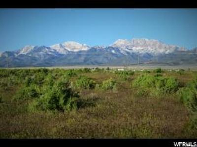 Tooele County Residential Lots & Land For Sale: 719 N Old Lincoln Hwy W