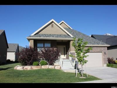 Mapleton Single Family Home For Sale: 787 S Silver Leaf Dr. (1800 W) Dr W #U2