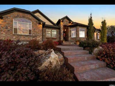 Tremonton Single Family Home For Sale: 168 N 570 E