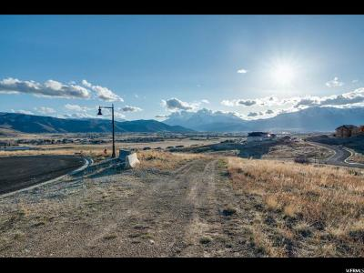 Wasatch County Residential Lots & Land For Sale: 494 S Old Stone E
