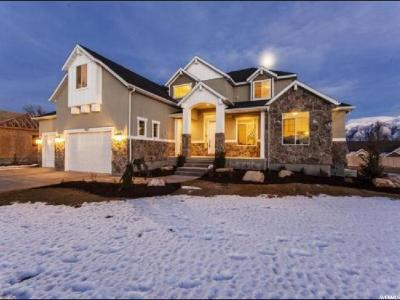 West Jordan Single Family Home For Sale: 9367 S 2250 W