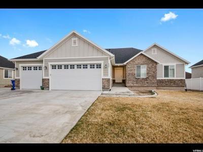 Saratoga Springs Single Family Home For Sale: 454 N Tioga Ave