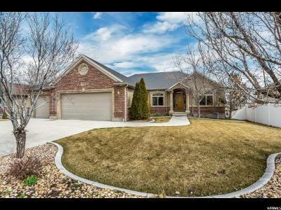 Riverton Single Family Home For Sale: 12133 S Park Hollow Ln W