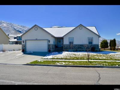 Payson Single Family Home For Sale: 333 W 1650 S