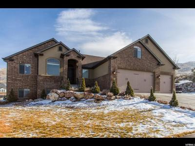Perry Single Family Home For Sale: 432 W 2825 S