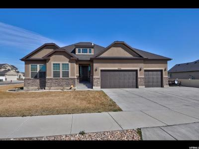 Riverton Single Family Home For Sale: 3866 W Red Sands Rd S