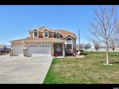 Erda Single Family Home For Sale: 5185 N Droubay Rd