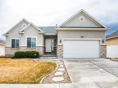 Riverton Single Family Home For Sale: 13637 S Daggerwing Way