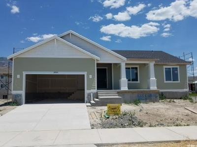Provo Single Family Home For Sale: 1655 S 680 W #254