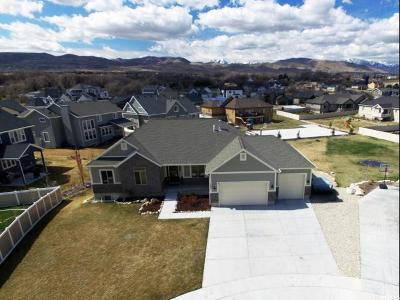 Bluffdale Single Family Home For Sale: 1393 W Black Wulff Cir