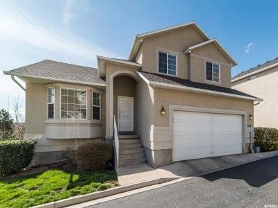 Provo Single Family Home For Sale: 1138 S 1450 E