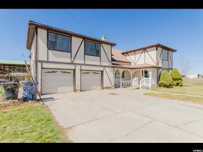 Cache County Single Family Home For Sale: 8195 N 2400 W