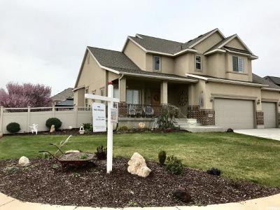 West Jordan Single Family Home For Sale: 8148 S Echo View Dr