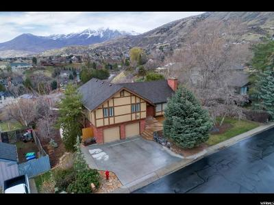Provo Single Family Home For Sale: 3641 N Little Rock Dr