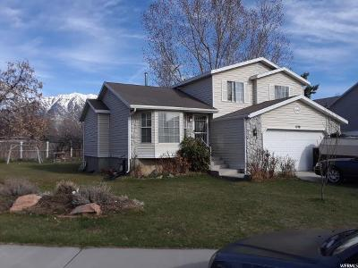 Orem Single Family Home For Sale: 1778 N 820 W