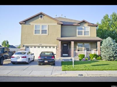 Lehi Single Family Home For Sale: 651 S Jordan Way #343