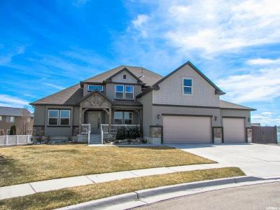 Lehi Single Family Home For Sale: 977 W 1700 S