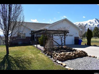 Mendon Single Family Home For Sale: 170 E 500 N
