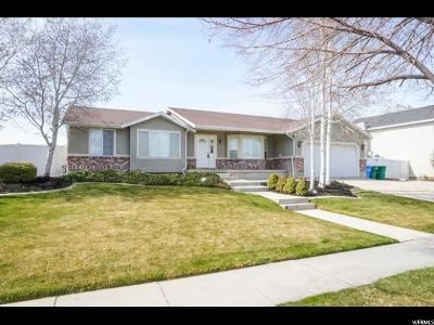 Riverton Single Family Home For Sale: 12028 Doves Landing Dr