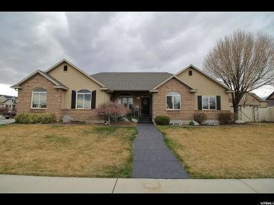 Lehi Single Family Home For Sale: 1124 N 1000 E