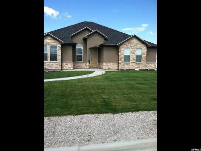 Huntington UT Single Family Home For Sale: $295,000