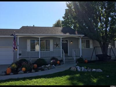 Orem Single Family Home For Sale: 349 W 730 S