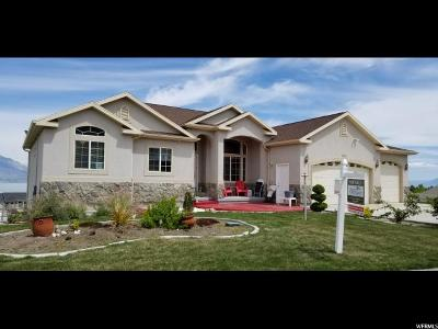 Saratoga Springs Single Family Home For Sale: 3878 S Panorama Dr