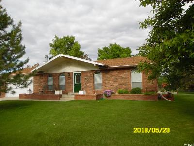 Erda Single Family Home For Sale: 3823 Campbell Rd