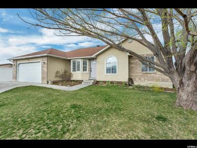 South Jordan Single Family Home For Sale: 11617 S Harvest Moon Ct W
