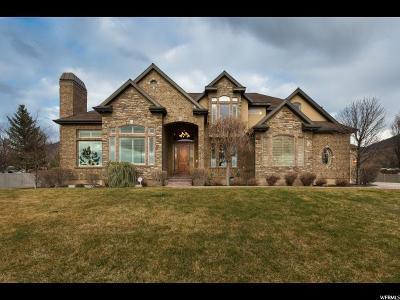 Draper Single Family Home For Sale: 13439 S 1400 E